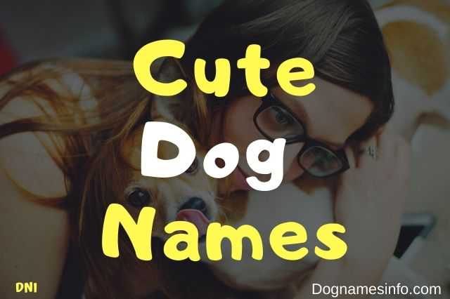 Cutest Dog Names