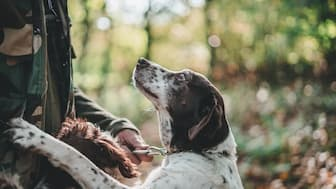 Female hunting Names for Dogs