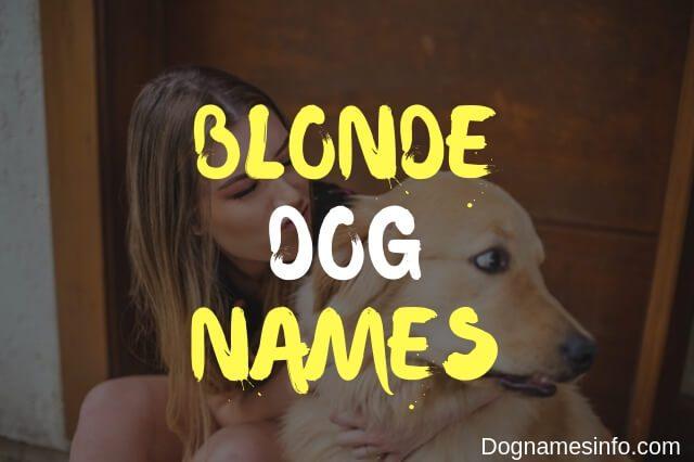 Blonde Dog Names