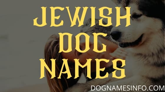 Jewish Dog Names