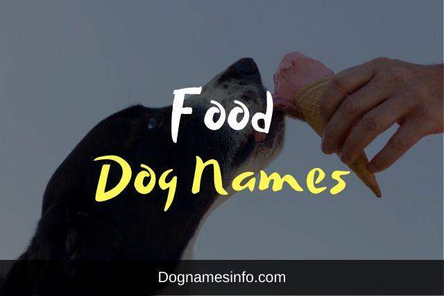 Unique Food Dog Names