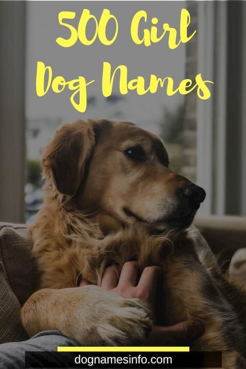Unique Female Dog Names