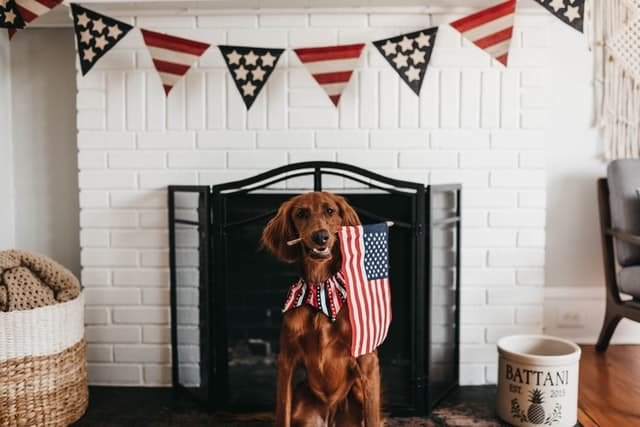 Patriotic Male and Female Dog Names