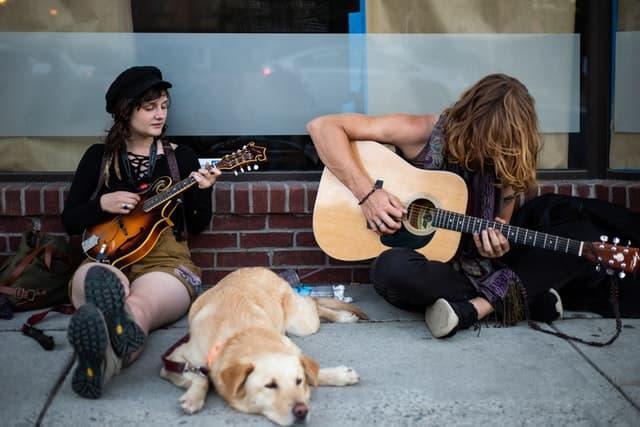 Folk Rock Male and Female Dog Names