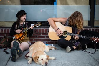 Heavy Metal Dog Names for Male and Female Puppies